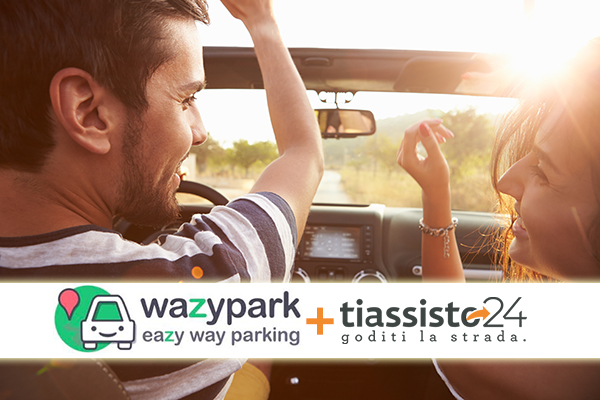 partnership wazypark